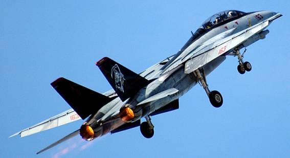 VF-101 GRIM REAPERS DET D NAS Miramar US NAVY F-14 TOMCAT Squadron Patch 2