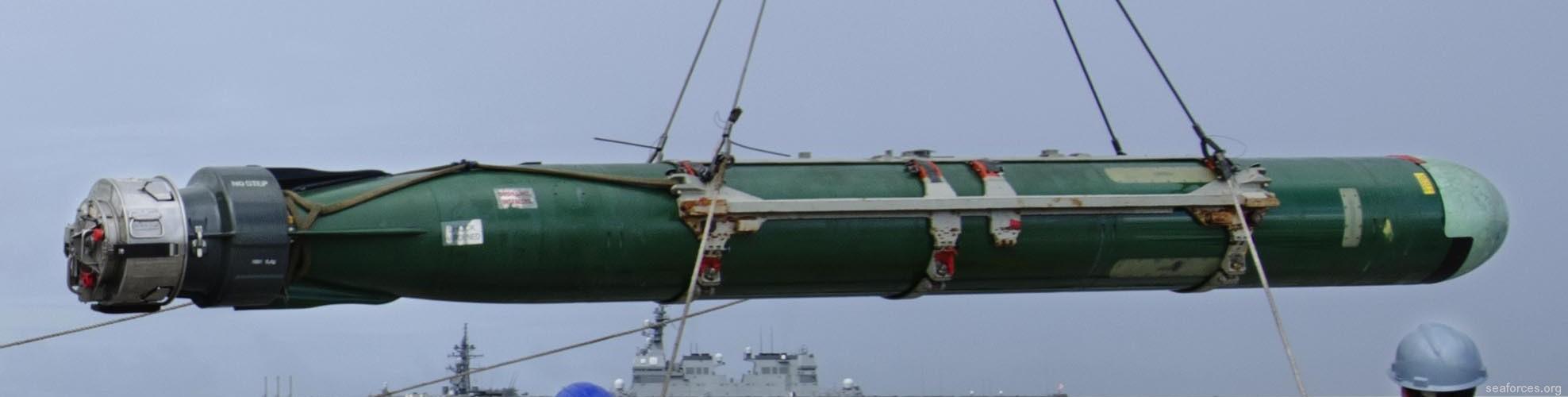 Mk-48 ADCAP Torpedo 533mm 21